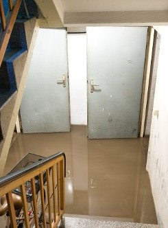 Water Downstairs - Flood Damage in Brooklyn, NY